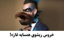 کلیپ خروس ريشوى همسايه غازه!.jpg (220×134)